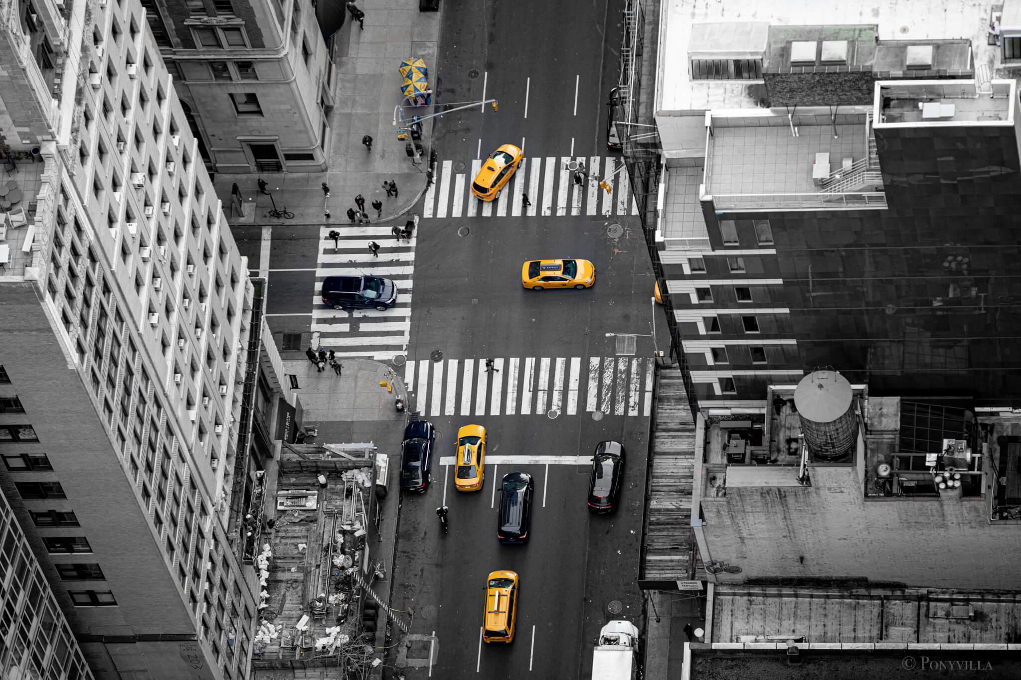 New_York_Daniela_Schreyer_compagnon_camerabag_backpack_4